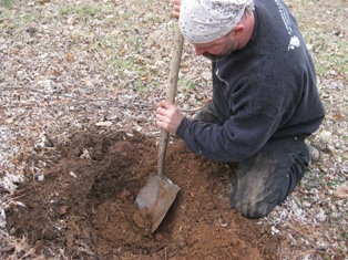 tree planting guide, digging hole